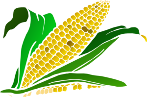 Cornfield clipart #3, Download drawings