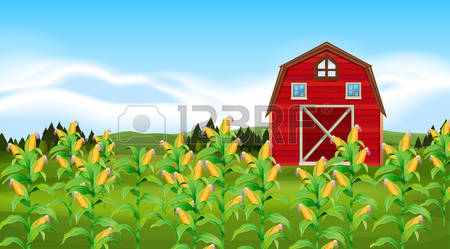Cornfield clipart #17, Download drawings