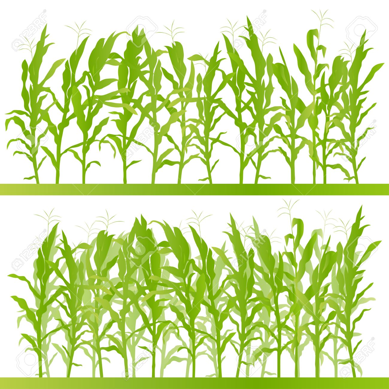 Cornfield clipart #15, Download drawings
