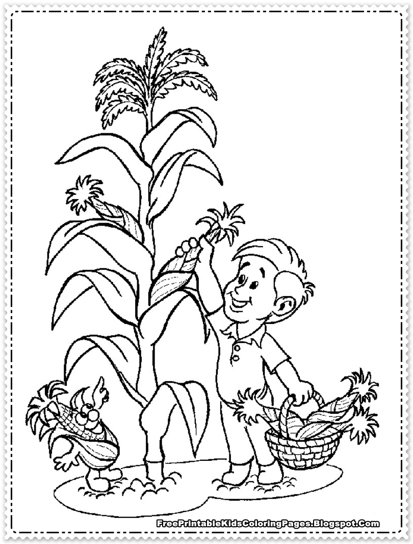 Cornfield coloring #5, Download drawings
