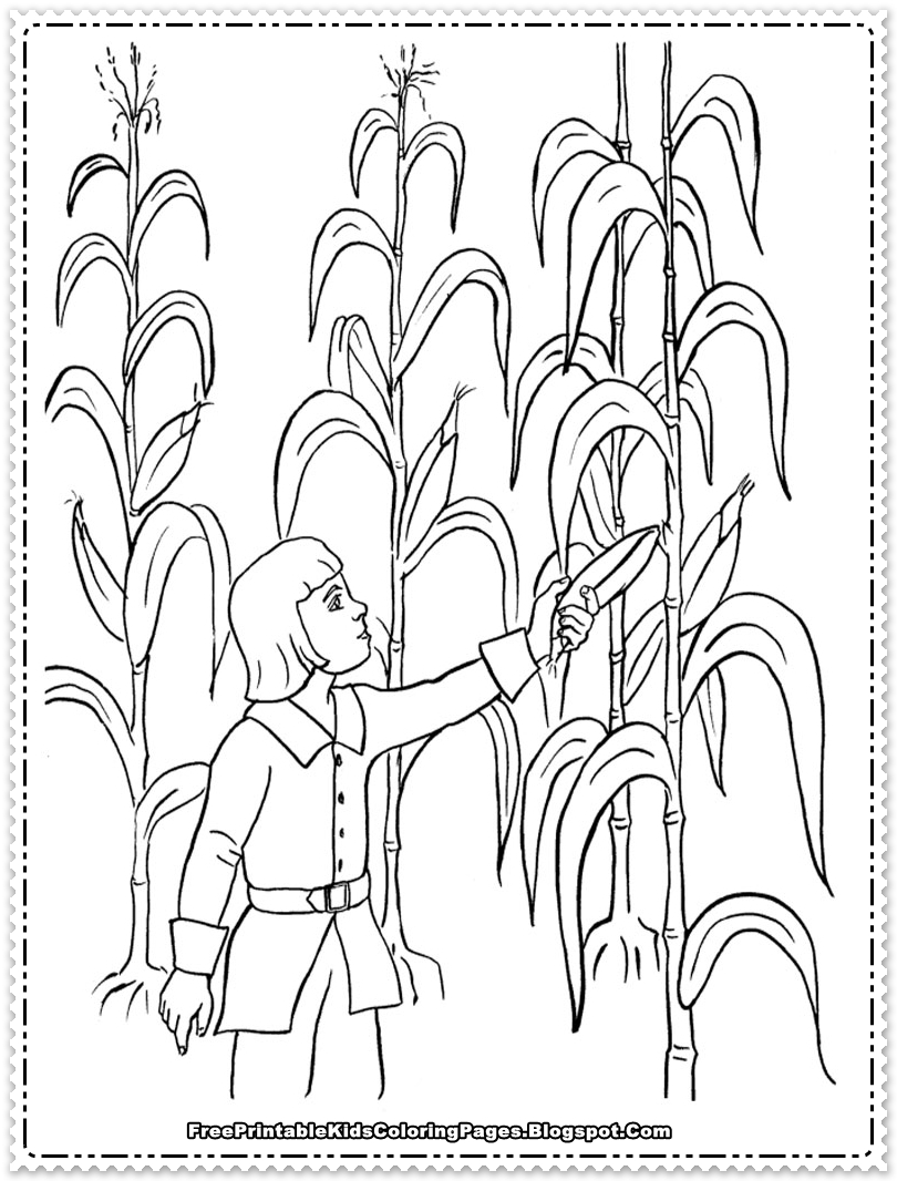 Cornfield coloring #15, Download drawings