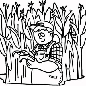 Cornfield coloring #14, Download drawings