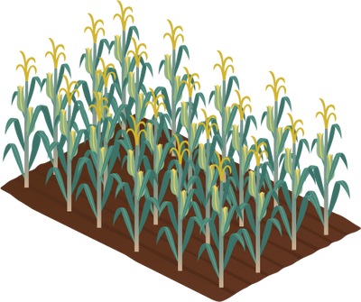 Cornfield svg #14, Download drawings