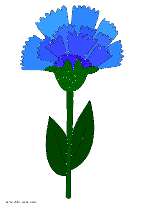 Cornflower clipart #9, Download drawings