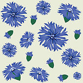 Cornflower clipart #10, Download drawings