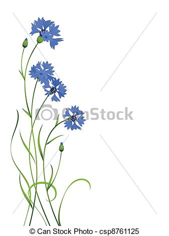 Cornflower clipart #7, Download drawings