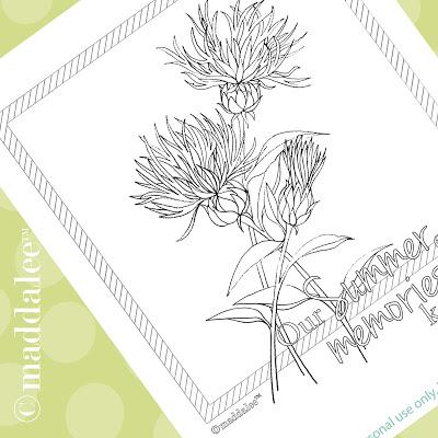 Cornflower coloring #7, Download drawings