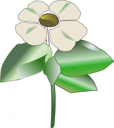 Cornus Blossom clipart #10, Download drawings
