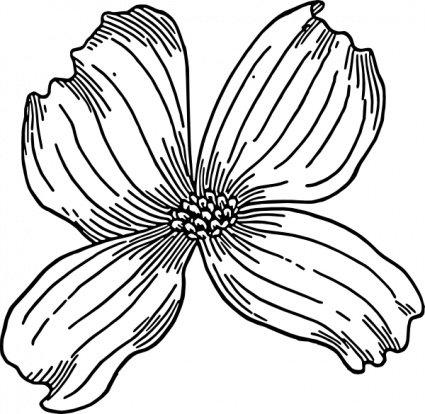 Cornus Blossom clipart #8, Download drawings