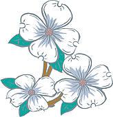 Cornus Blossom clipart #17, Download drawings