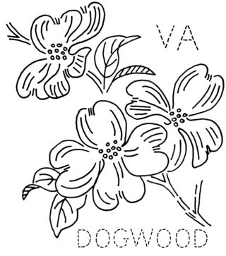 Cornus Blossom coloring #12, Download drawings