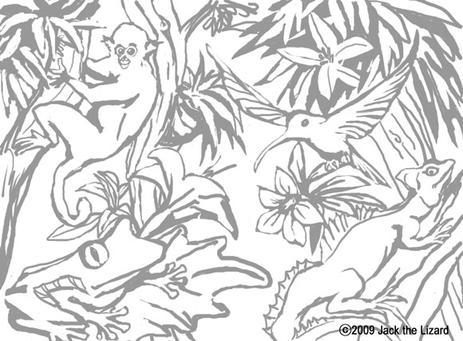 Costa Rica coloring #14, Download drawings