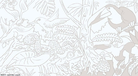 Costa Rica coloring #2, Download drawings