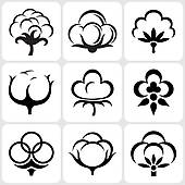 Cotton clipart #10, Download drawings