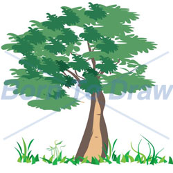 Cottonwood Trees clipart #15, Download drawings