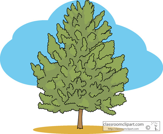 Cottonwood Trees clipart #20, Download drawings