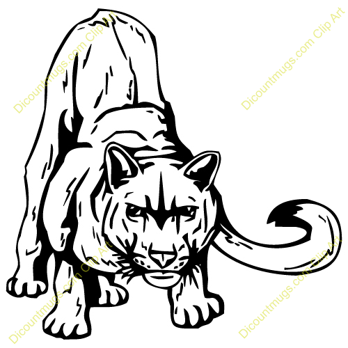 Cougar clipart #17, Download drawings
