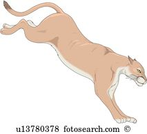 Cougar clipart #18, Download drawings