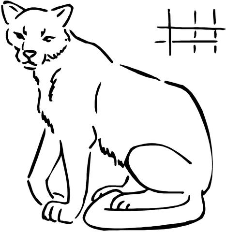 Cougar coloring #7, Download drawings