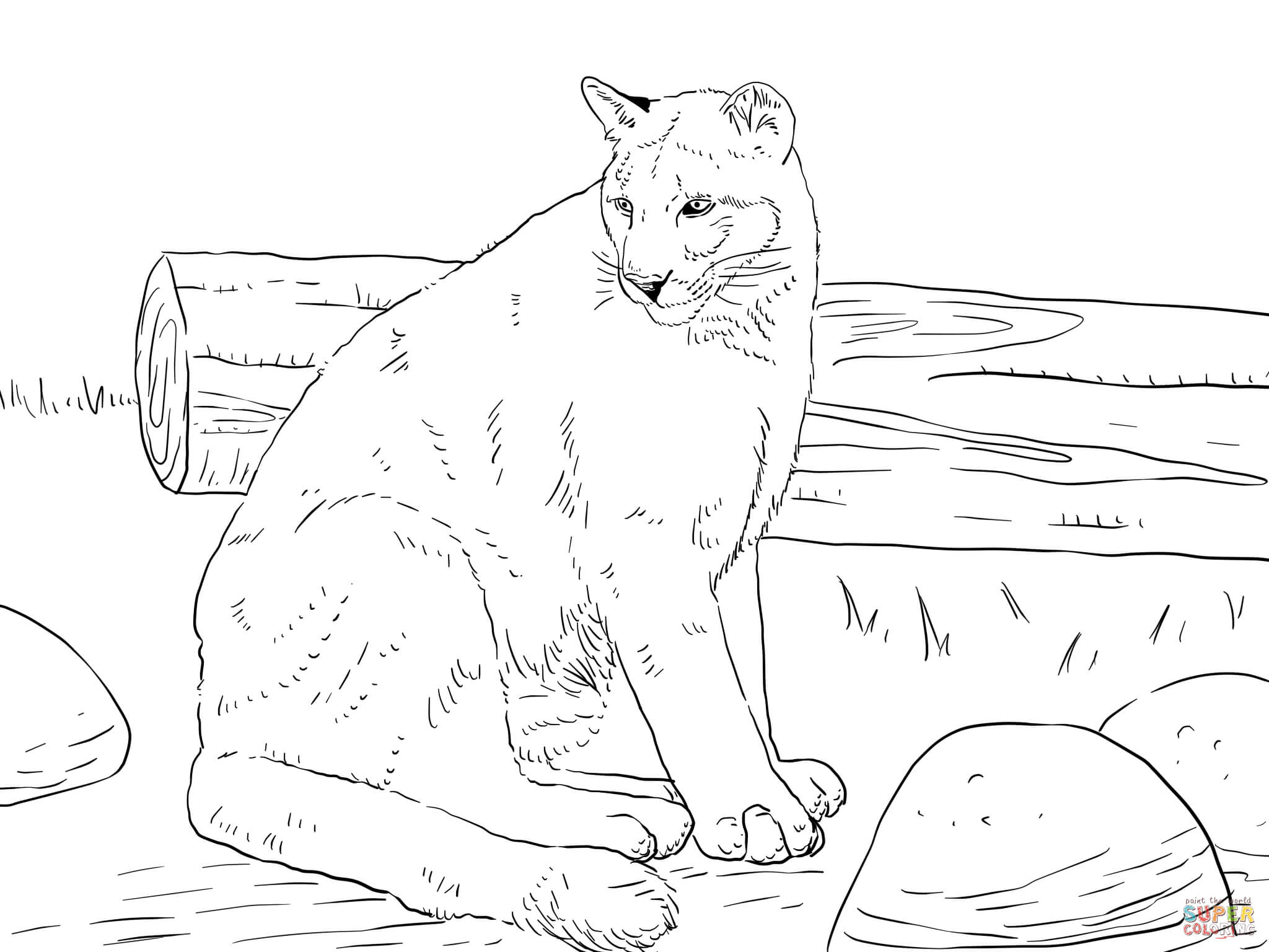 Cougar coloring #5, Download drawings