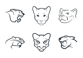 Cougar svg #264, Download drawings