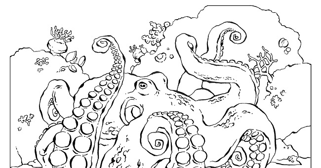 Course coloring #4, Download drawings