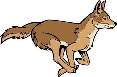 Coyote clipart #12, Download drawings