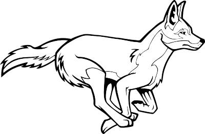 Coyote clipart #7, Download drawings