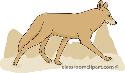 Coyote clipart #1, Download drawings