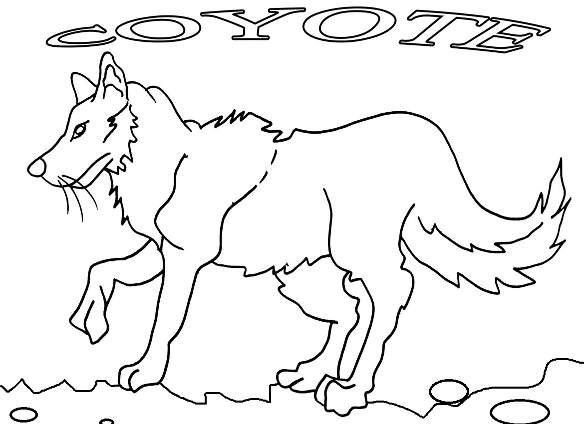 Coyote coloring #8, Download drawings