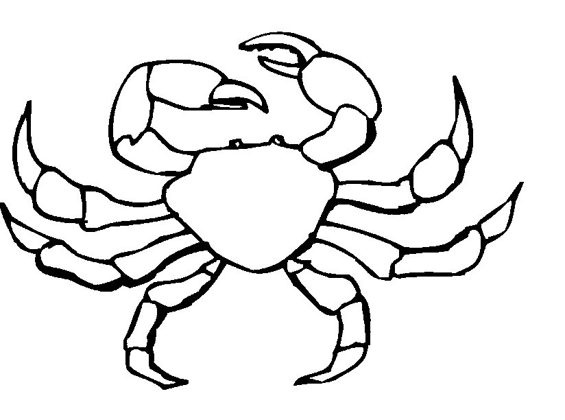 Crab coloring #14, Download drawings