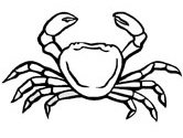 Crab coloring #15, Download drawings