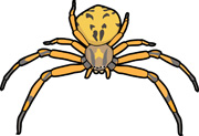 Jumping Spider clipart #13, Download drawings