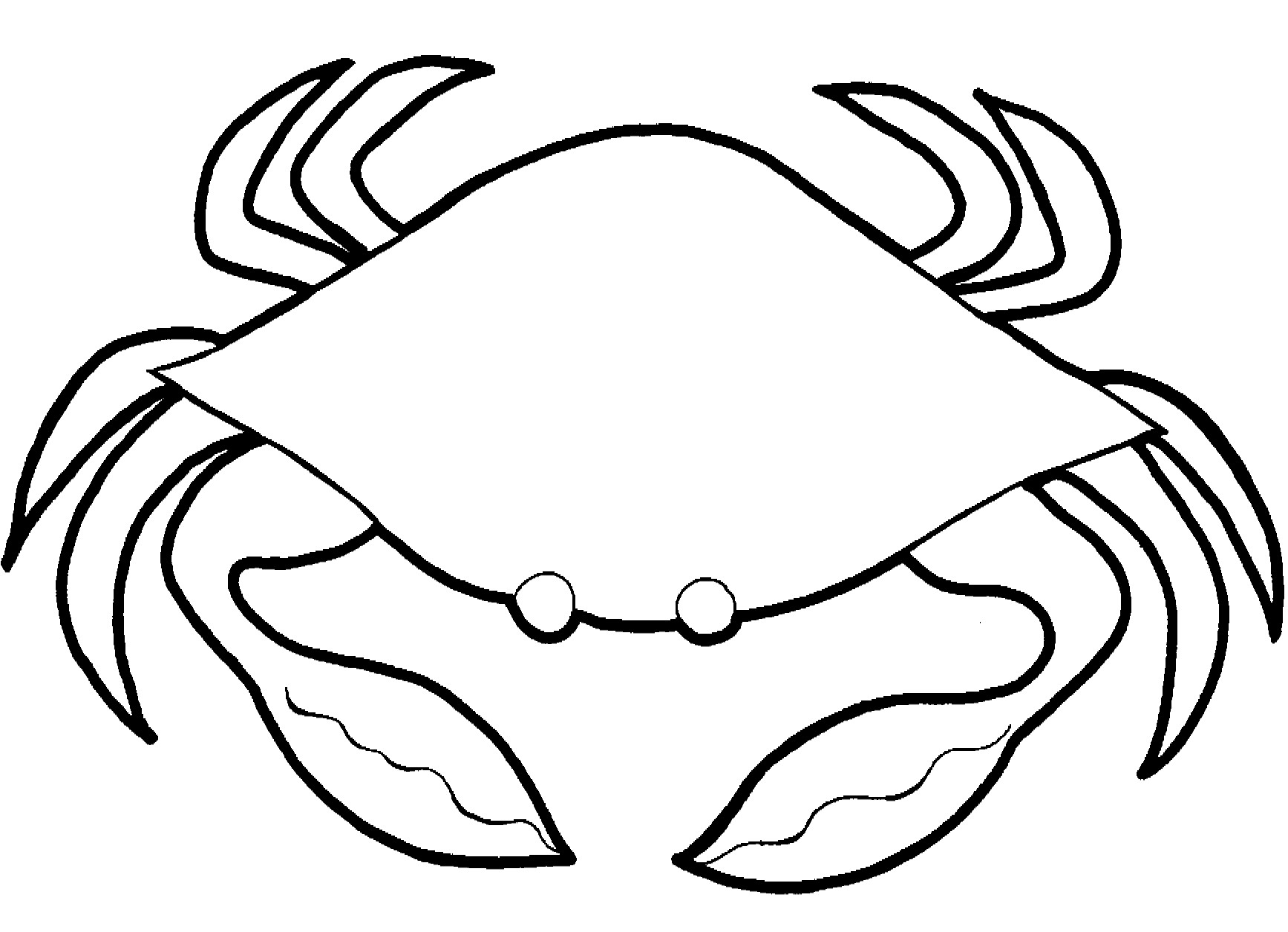 Crab Spider coloring #13, Download drawings