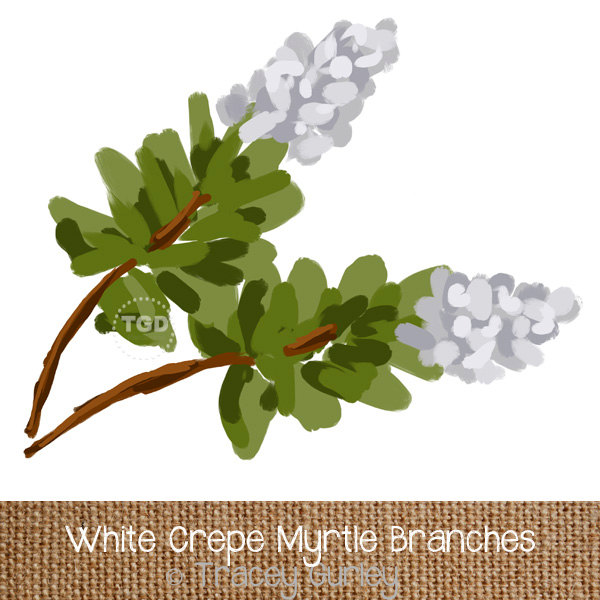 Crape Myrtle clipart #20, Download drawings