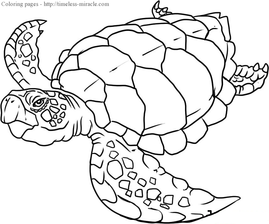 Creature coloring #3, Download drawings