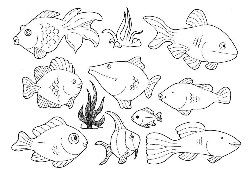 Creature coloring #14, Download drawings