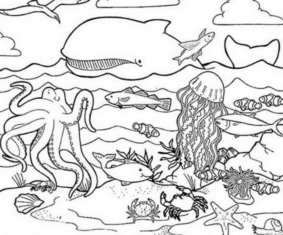 Creature coloring #11, Download drawings