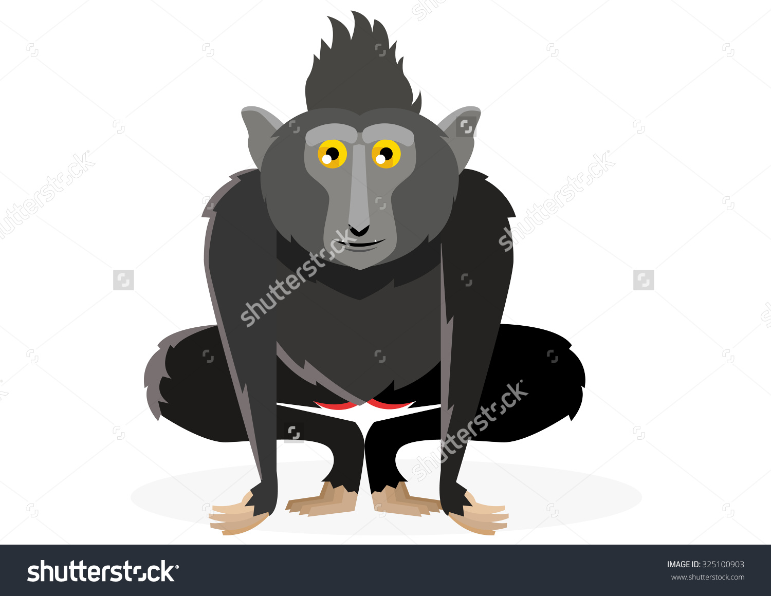 Crested Black Macaque clipart #10, Download drawings