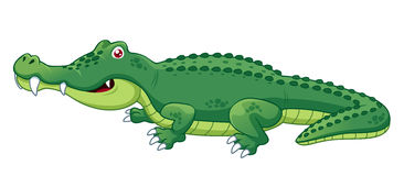 Crocodile clipart #16, Download drawings