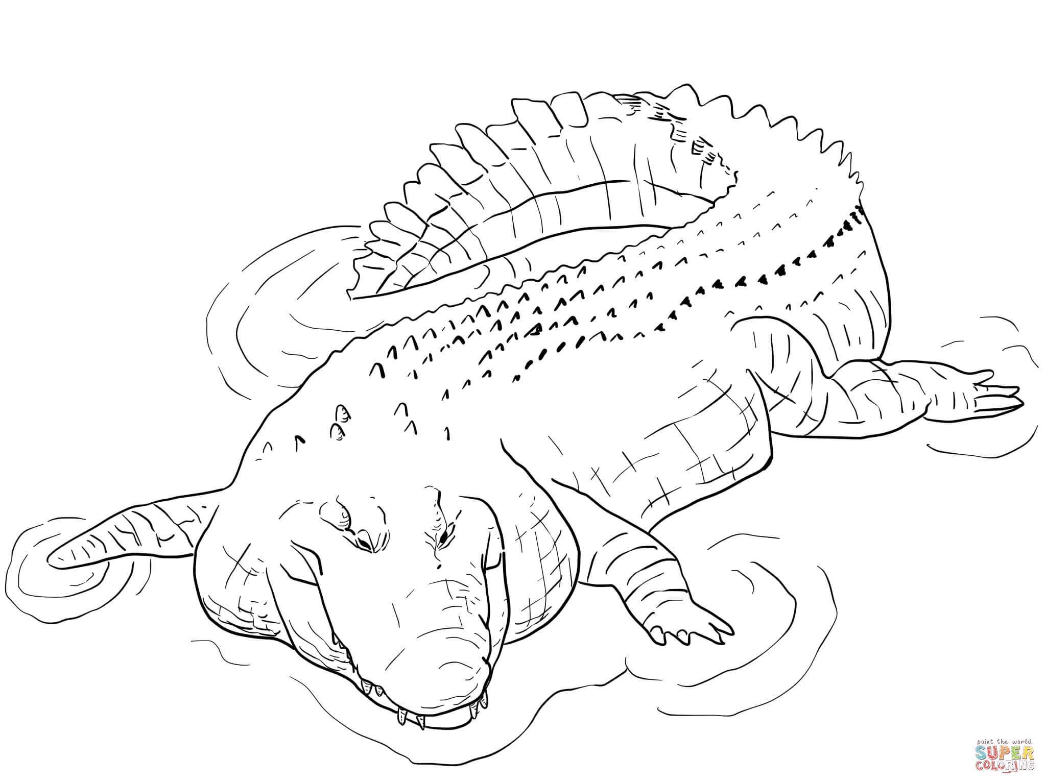 Crocodile coloring #11, Download drawings