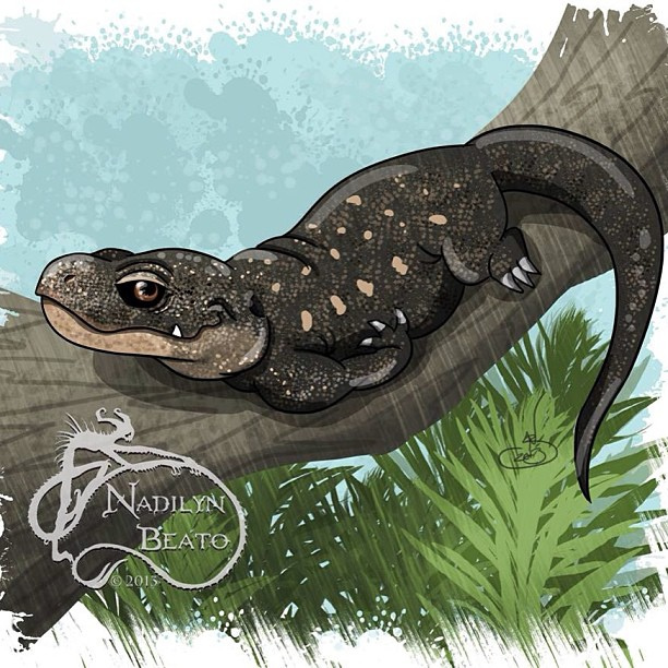 Crocodile Monitor clipart #1, Download drawings