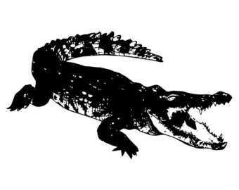 Crocodile svg #3, Download drawings
