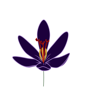 Crocus svg #19, Download drawings