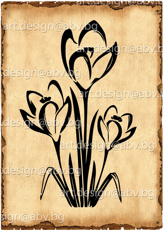 Crocus svg #8, Download drawings