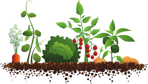 Crops clipart #20, Download drawings