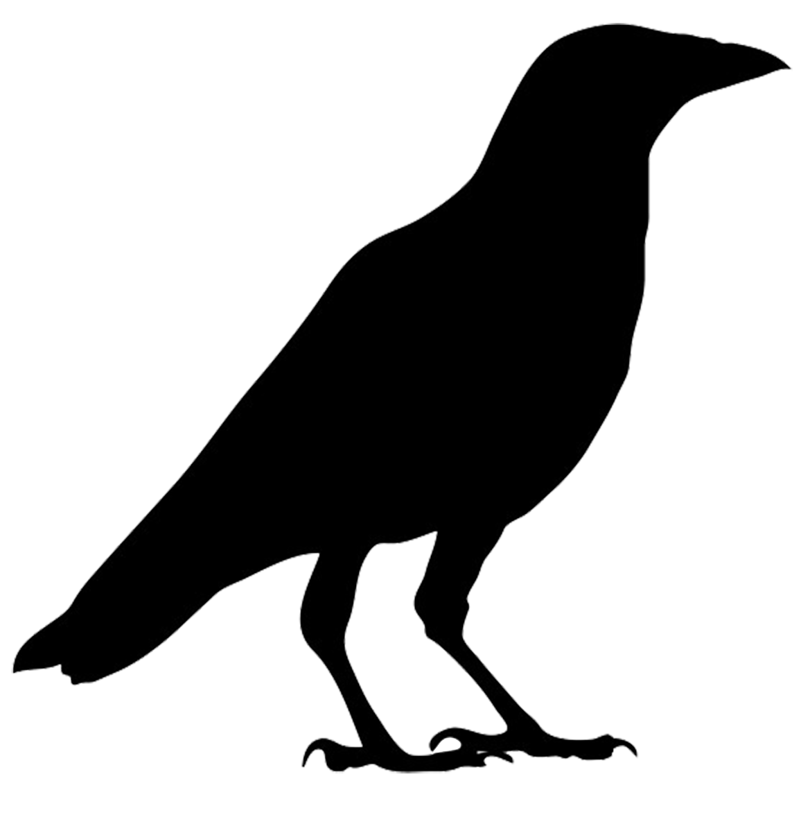 Crow clipart #10, Download drawings