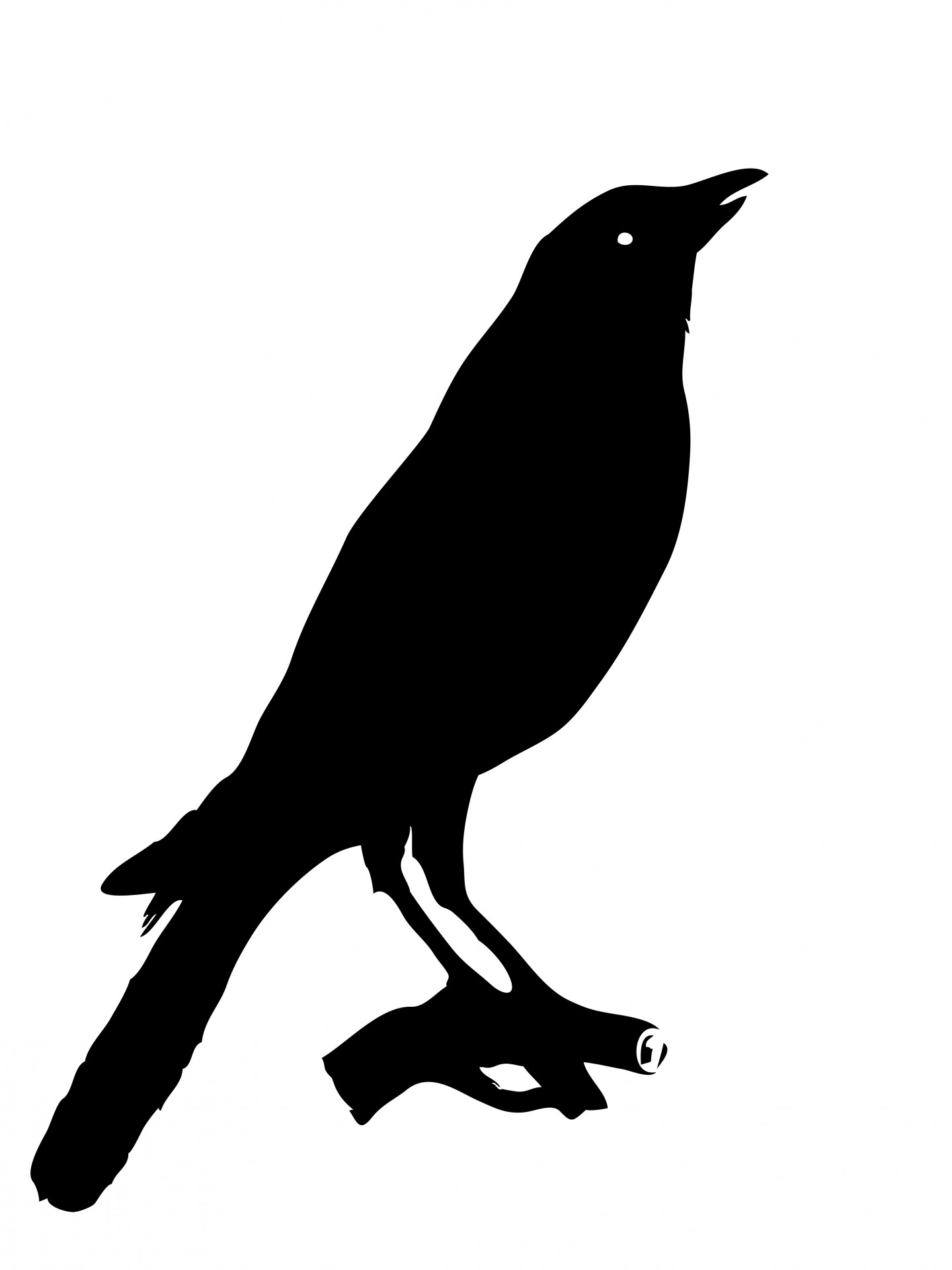 Crow clipart #17, Download drawings