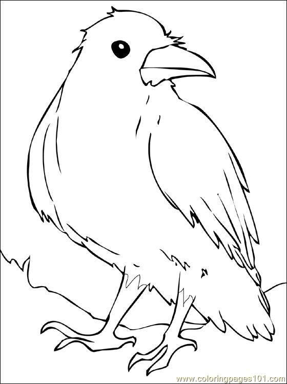Crow coloring #15, Download drawings