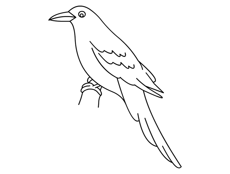 Crow coloring #5, Download drawings
